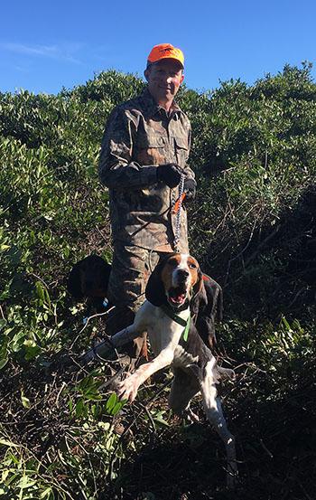 Hound Hunting Black Bear