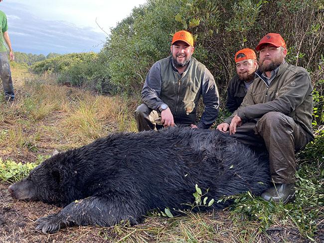Black Bear Hunt in North Carolina